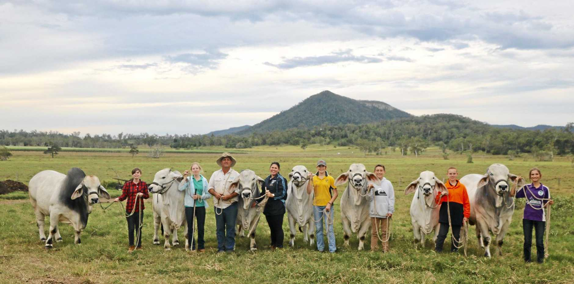 CATTLE CLUB: Lilli Humberdross, Peta McMahon-Neale, cattle owner Lawson Camm, SCCC teacher Jessica Hehir, Casey Lade, Keelan O'Brien, Jesse Askew and Millie Cran.