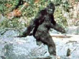 Bigfoot exposed in new FBI file