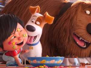 MOVIE REVIEW: Favourites get new leash on life in Pets 2