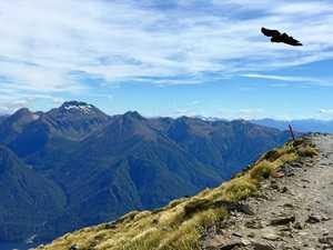 Fall guy finds his feet on NZ's glorious Kepler Track
