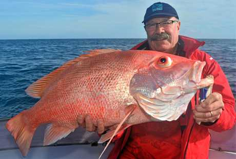 David with his first ever nannygai which was a beauty at approximately 8 to 9 kilograms, caught on a Reel Addiction Sport Fishing Charter.