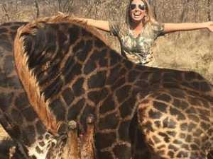 Hunter made 'decorative pillows' from giraffe