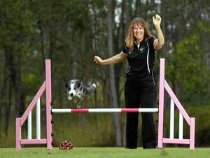 OAM AWARDS: Ipswich dog trainer receives top honours