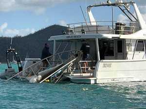 $17.1M plan to prevent shark attacks in Queensland waters