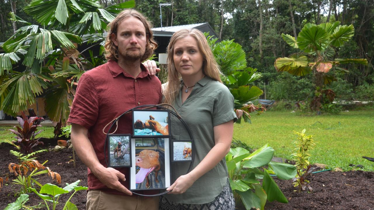 Kuranda residents Zac and Kirstee Mazlin, whose pet staffordshire terrier Goji was allegedly hanged by another property owner after returning home from a walk. PICTURE: Sian Jeffries