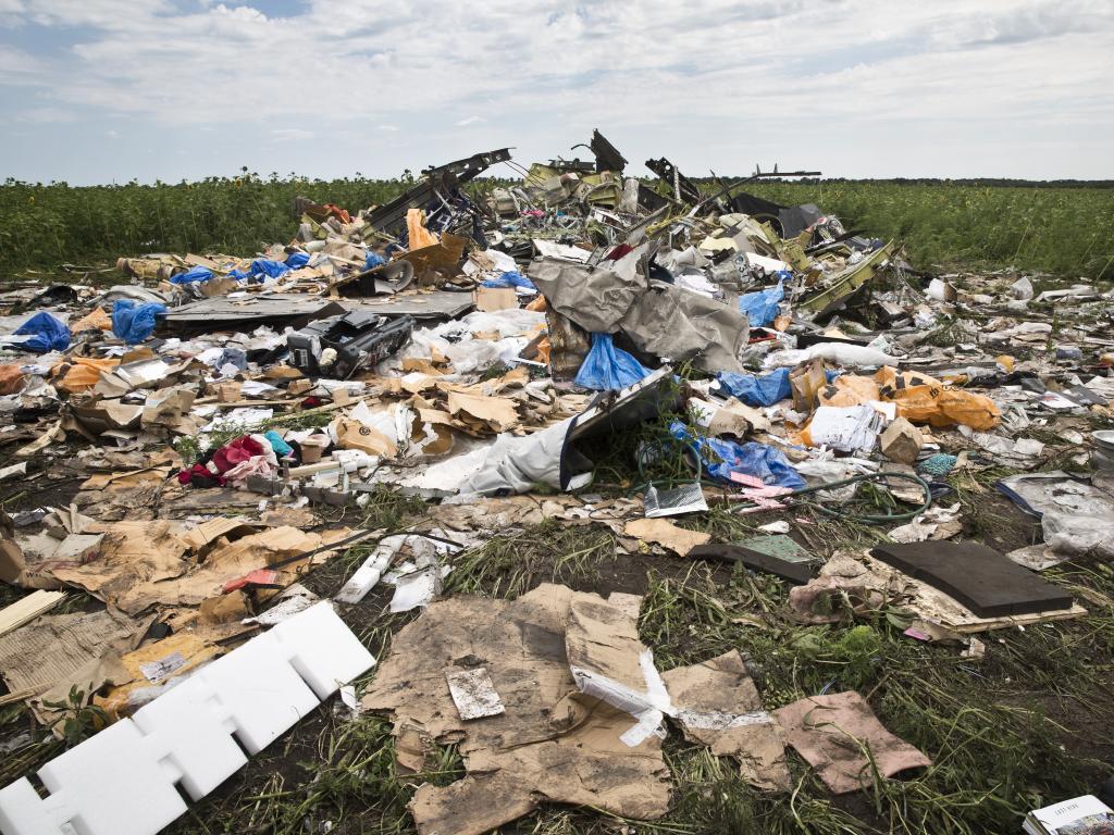 The crash site in Rozsypne, Eastern Ukraine. Picture:  Ella Pellegrini
