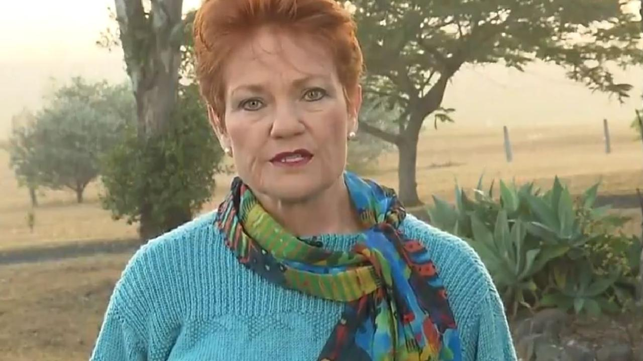 Pauline Hanson said she thinks there are