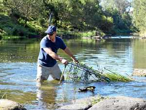 Casino man pulls shopping trolleys from river in spare time