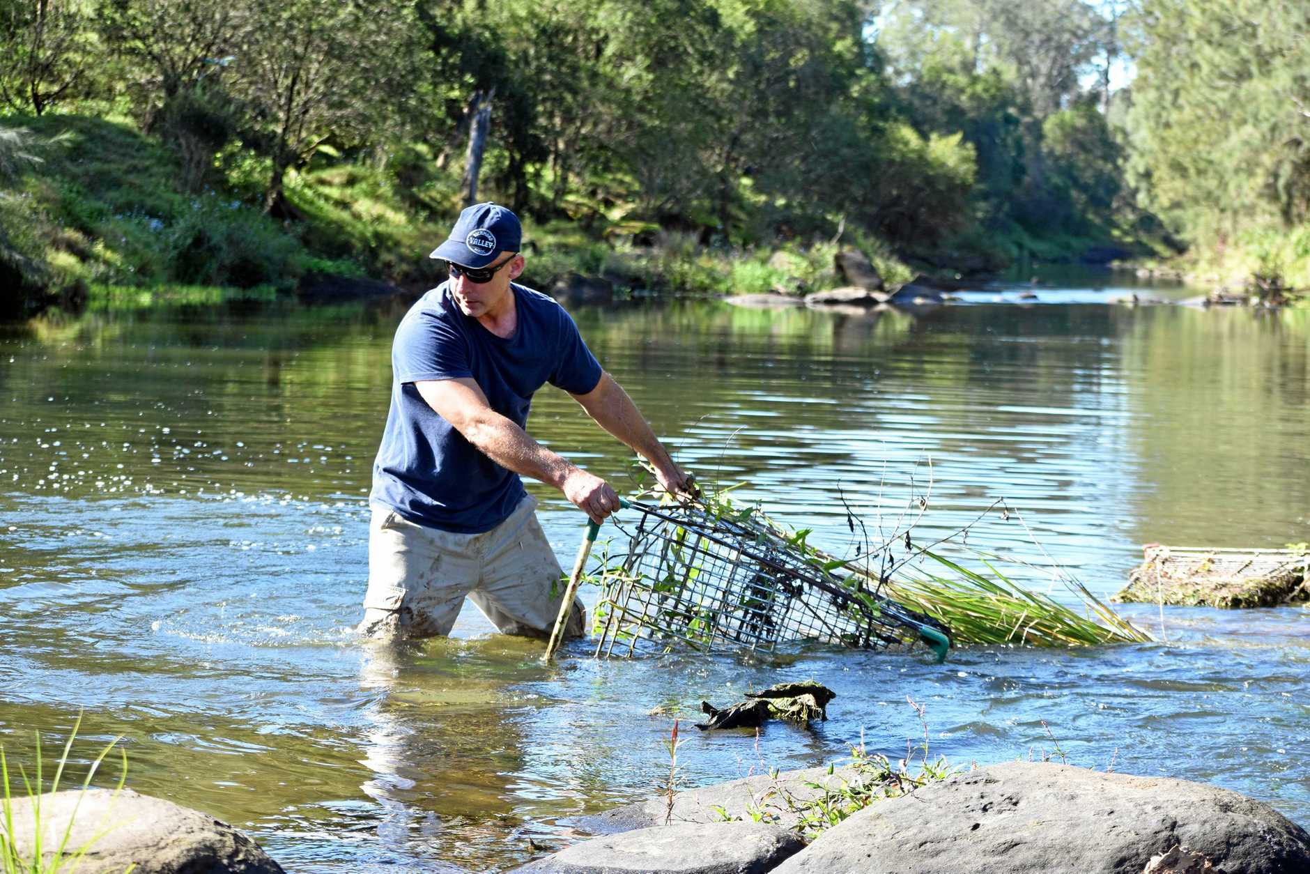 Ben West pulling trolleys from the Richmond River at Casino.