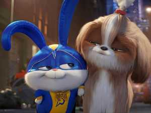Sassy Secret Life of Pets 2 character suits comedian