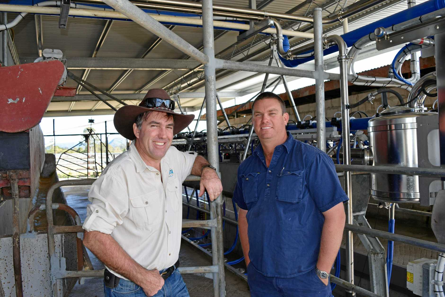 Maleny Dairies' Ross Hopper (left) and local farmer Jason Rozynski have partnered up to boost the local dairy industry, 5 July 2016