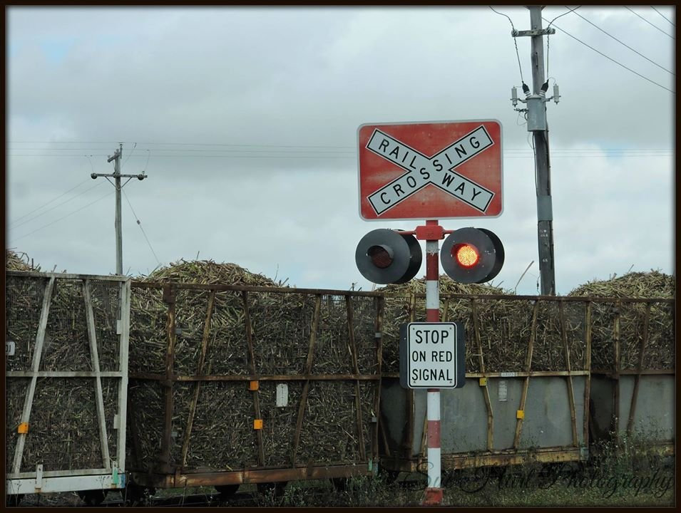 Mackay Sugar has issued an urgent cane train safety warning to the region's drivers.