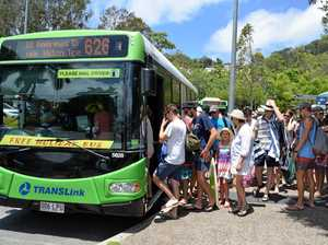 Noosa transport drives congestion-busting future