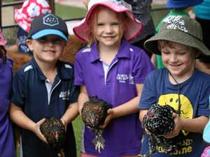Families invited to kindy experience this weekend