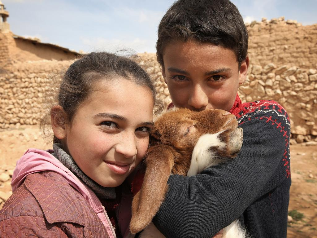 This sheep is not just a pet for Mohammed and Asma. It's their family's livelihood. Picture: Ella Pellegrini