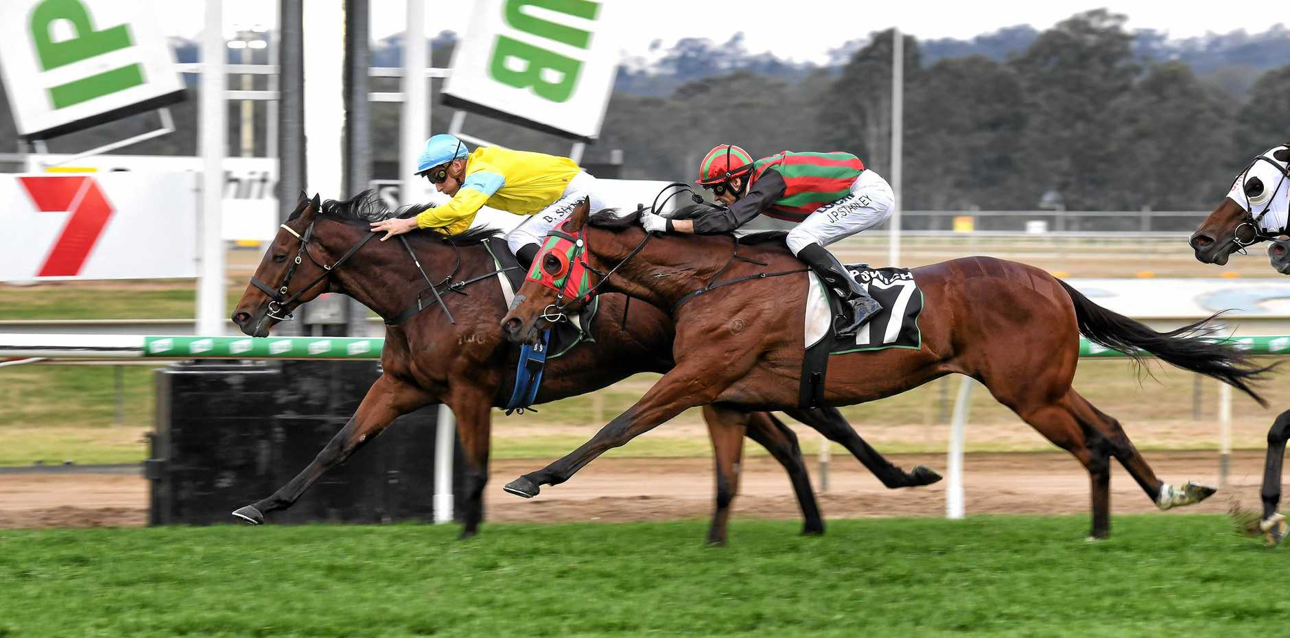 TERRIFIC CHALLENGE: Six-year-old gelding Man Booker, with Sydney jockey Blake Shinn aboard, holds out the fast-finishing Astoria in Saturday's City of Ipswich Eye Liner Stakes.