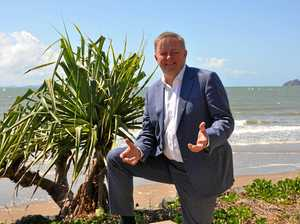 PAUL MURRAY: Albo's heading for same ditch as Shorten