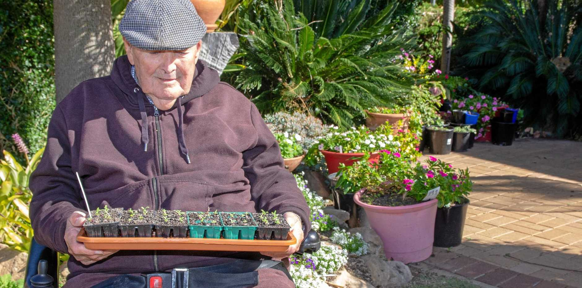NEW GROWTH: Tabeel resident and gardening guru Allen Goos holds a tray of seedlings from his award winning gardening patch he maintains at Tabeel.