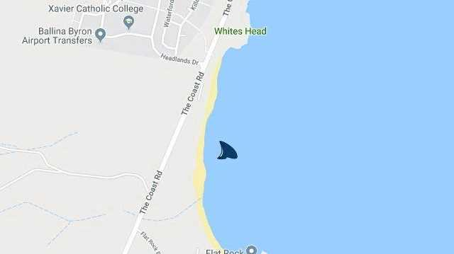 Shark sighted in East Ballina
