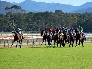 Your guide to the Coffs Harbour Showcase meeting this Friday