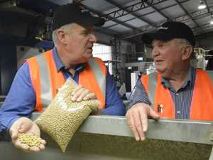 JOBS: Government grants helps Toowoomba company expand