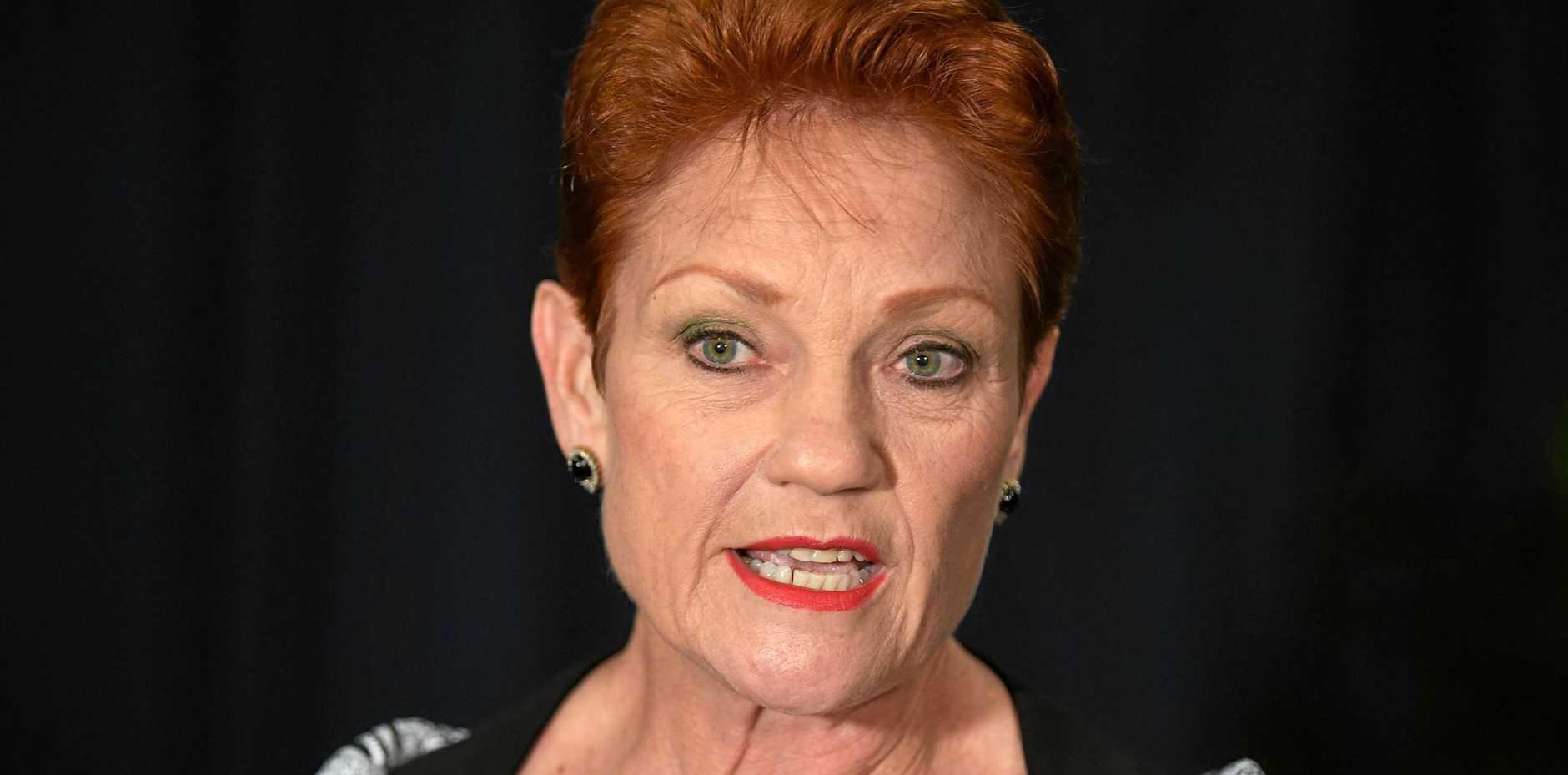 One Nation leader Senator Pauline Hanson.