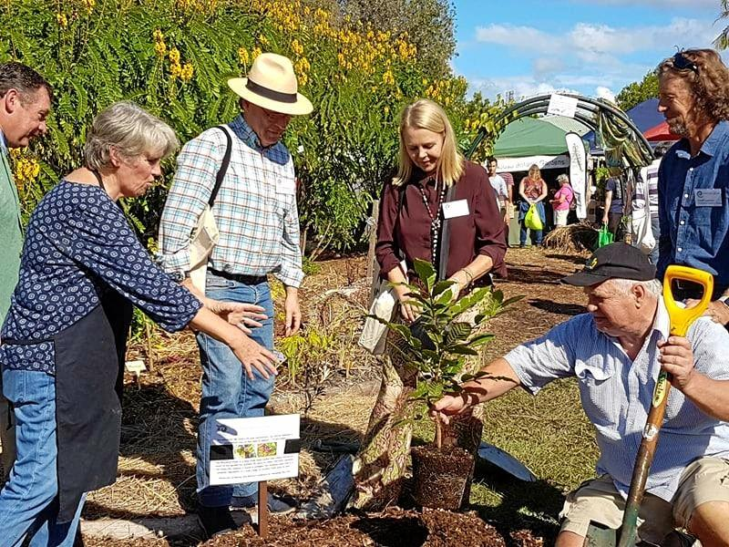 GROWING FOOD BASE: A bush tucker tree is planted by special guests including Mayor Tony Wellington and MP Sandy Bolton at Permaculture Noosa's first festival.