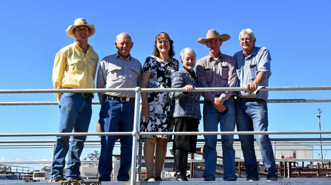 Saleyards $276K facelift first step in council's master plan