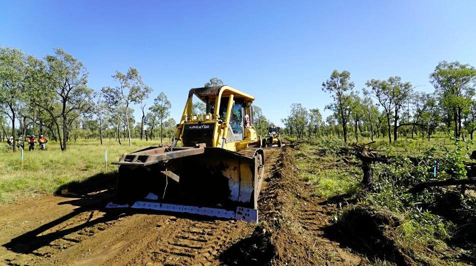 Land clearing and surveying is underway at Adani's Carmichael Mine site after last week's green light came through for the mega mine.