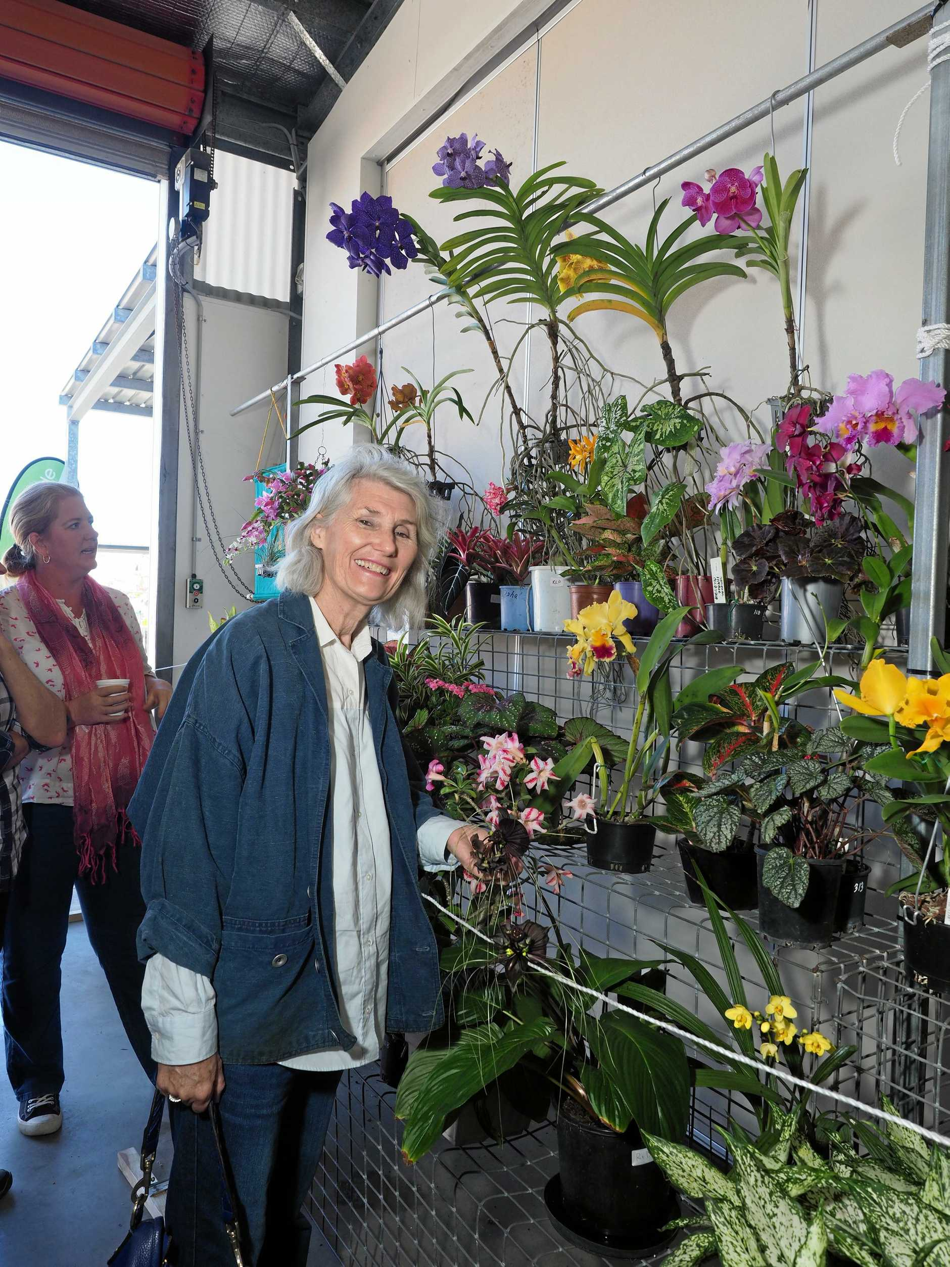 Anne Kelly admires the horticulture pavilion exhibits the Mackay Show 2019.