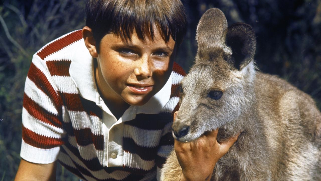 Child actor Garry Pankhurst as Sonny with kangaroo skippy in 1960s TV show 'Skippy The Bush Kangaroo', in scene from TV documentary 'Skippy: Australia's First Superstar'.