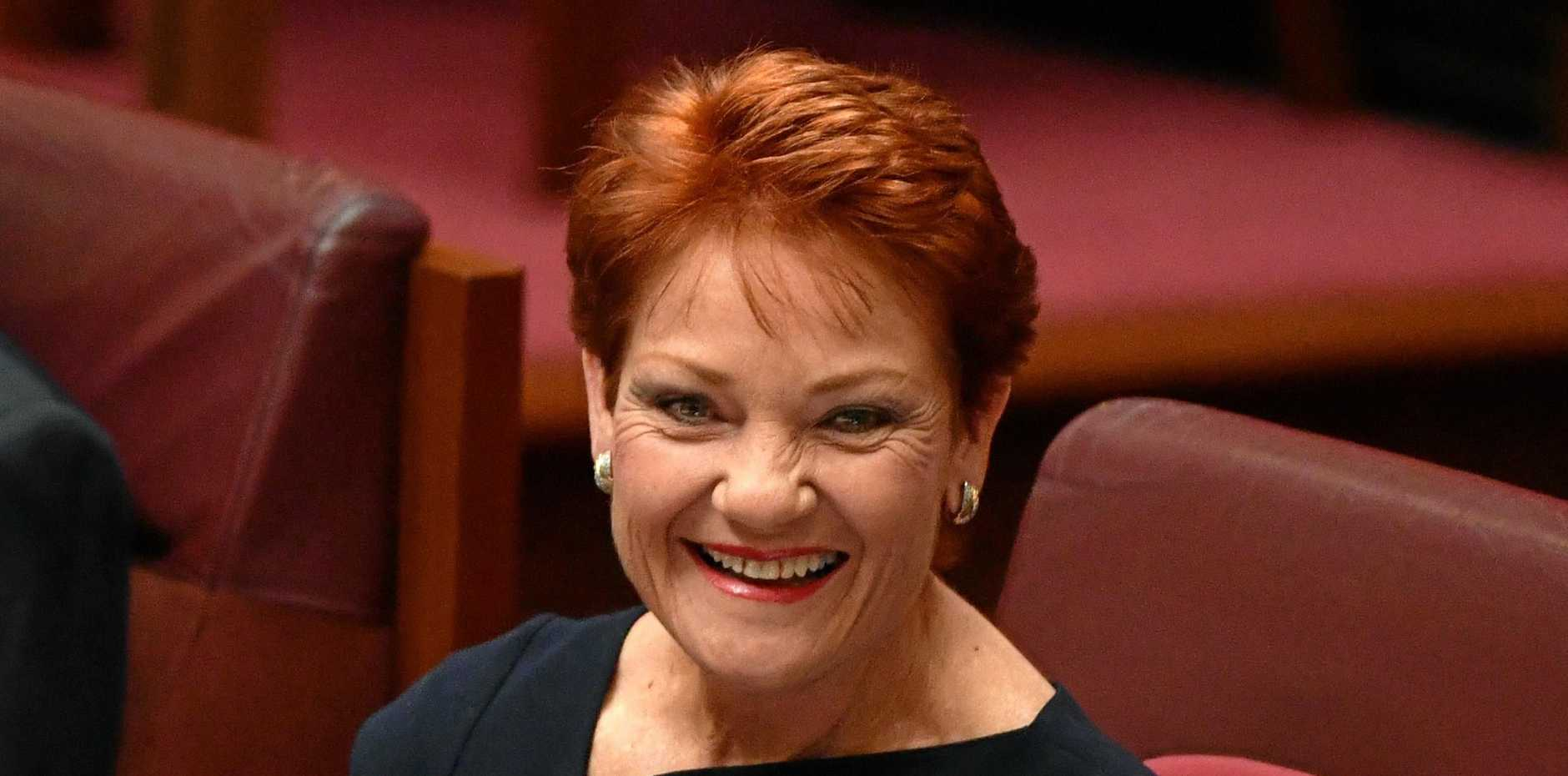 One Nation leader Senator Pauline Hanson in the Senate chamber at Parliament House in Canberra.