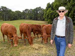 The surprise change in Gympie's farm sale prices