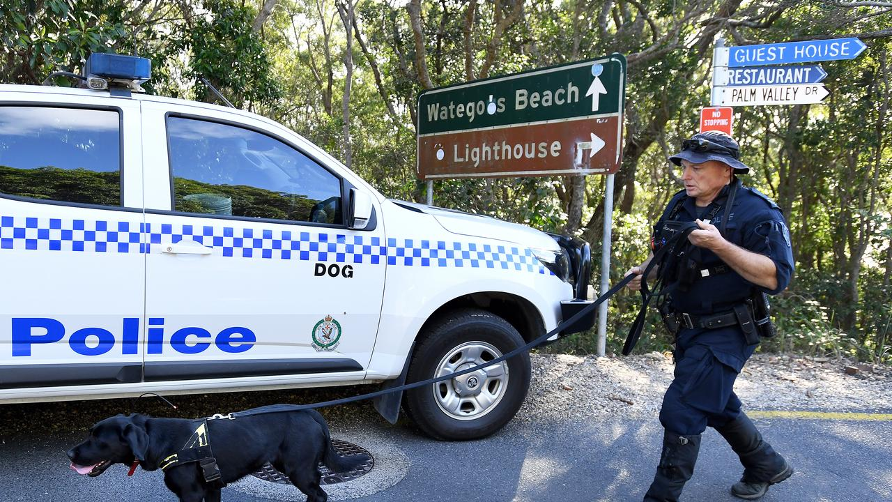 A police sniffer-dog is seen as a search continues for missing backpacker Theo Hayez at Byron Bay.