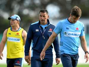 Waratahs coach Daryl Gibson set to quit today