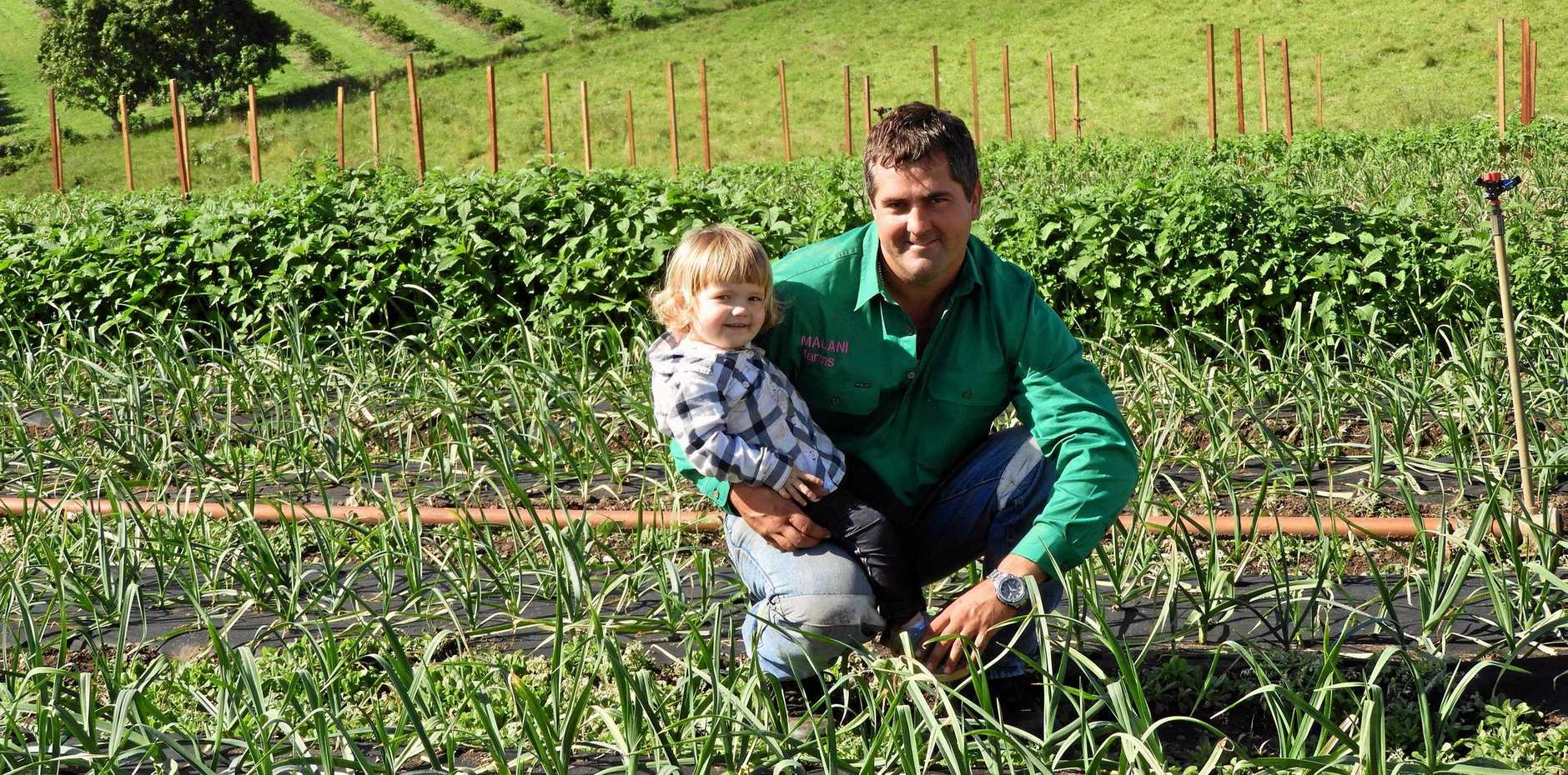 HOME TURF: Lance Bunter and daughter Madison in their garlic crop on their Kia Ora property.