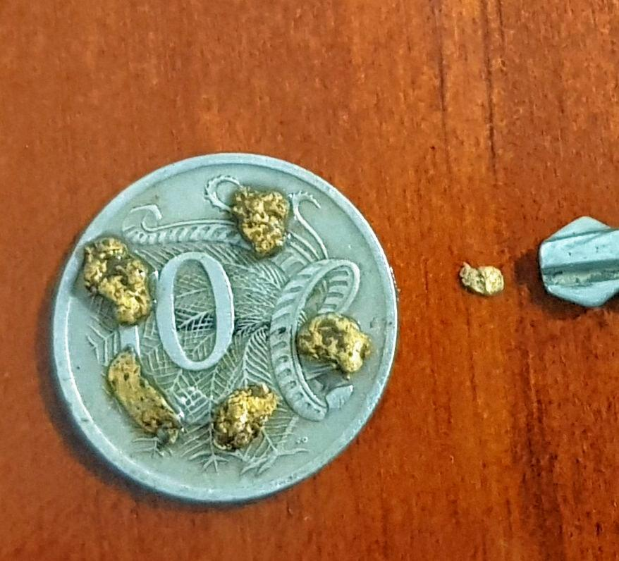 HEART OF GOLD: Some of the nuggets found during a recent treasure hunt in Targinnie.