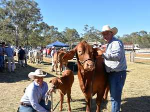 PHOTOS: Celebrating a century of the Mount Larcom Show