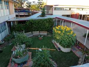 SCHOOL NEWS: Gardens at Glenore Grove