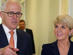 Dutton: 'Turnbull offered me Bishop's job'