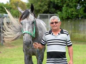 Horse Racing: 'Horses do have long memories'