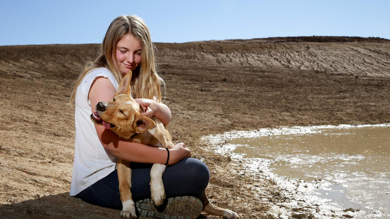 Charlotte Darcy, 15, on the family farm in Tullamore with their dog J at one of their many empty dams. Picture: Jonathan Ng