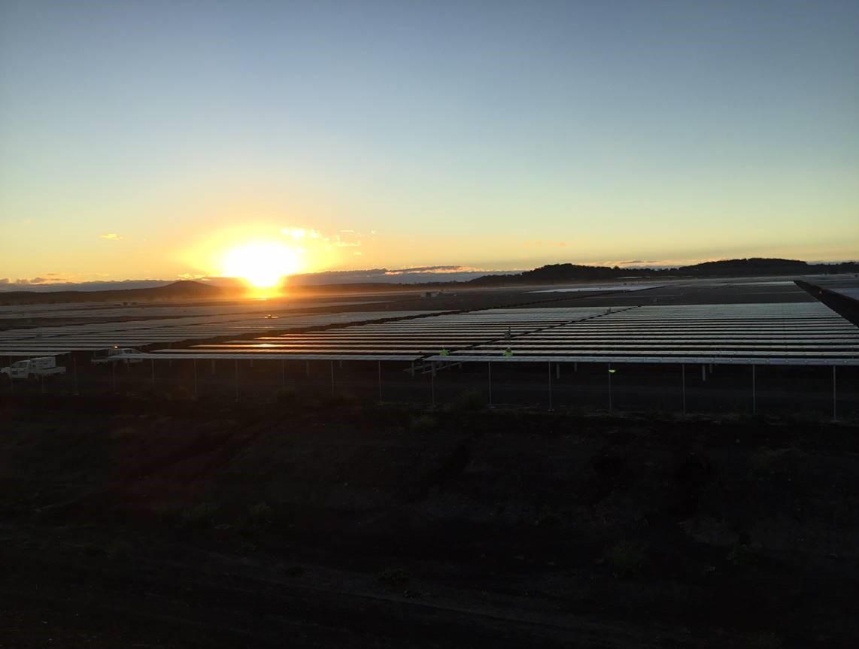 The Yarranlea Solar Farm in June.