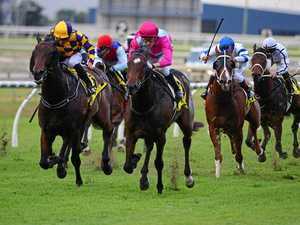 Local hope showing some promise ahead of Guineas
