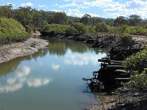 Hardwood structure to stop Clyde Creek erosion