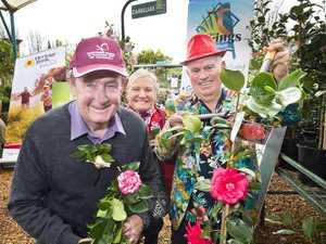 Toowoomba Camellia Show & Garden Expo