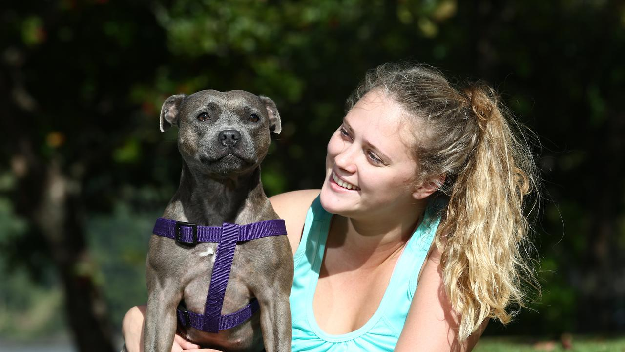 Australian Reproductive Surgeries is offering canine semen freezing to Cairns and Far North residents at the Marlin Coast Veterinary Hospital. Mehaley Nish plays with her staffordshire terrier Maggie along Vasey Esplanade, Trinity Beach. PICTURE: BRENDAN RADKE