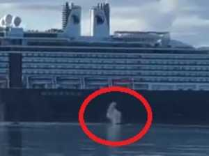 Cruise ship slammed after near miss