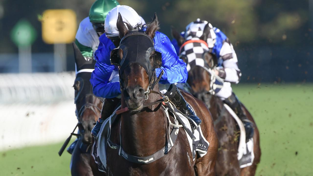 Gaulois ploughed through the heavy conditions to win the Civic Stakes. Picture: AAP