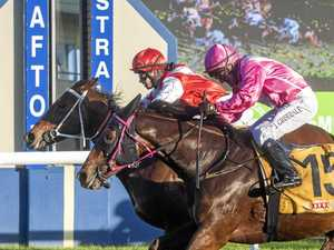 Milligan horse has Malea Magic-al run in Carlton Cup